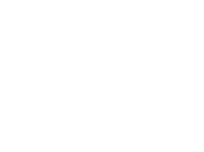 A.C.E. BUSINESS SOLUTION ACEビジネスソリューション株式会社